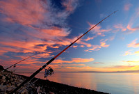 Fishing Poles at Alameda Point At Sunset