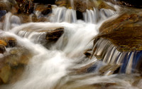 Stream in the Canadian Rockies