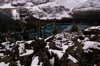 Lake O'Hara from Lake Oesa Trail