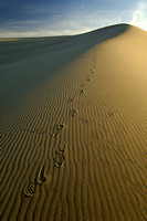 Foot Prints in Eureka Sand Dunes