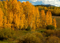 Falls Colors in the San Juan Mountains