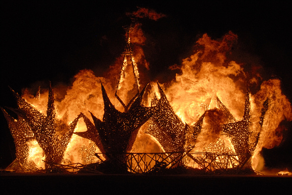 The Burning of the Man 2009